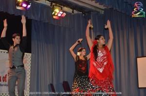 ADIRD6-Flamenco