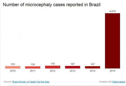 Zika Brazil Microcephaly-chart