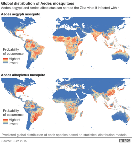 Zika risk map Source ELife 2015