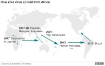 Zika world spread