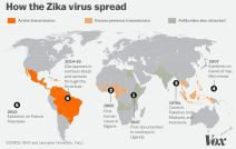 zika_spread_Feb1.0