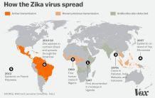 zika_spread_Feb1.0
